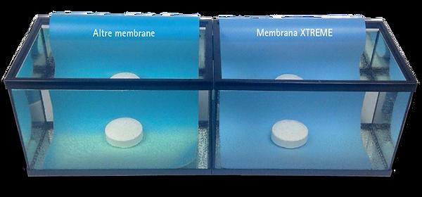 test-cloro-ALKORPLAN-XTREME-1024x478.png