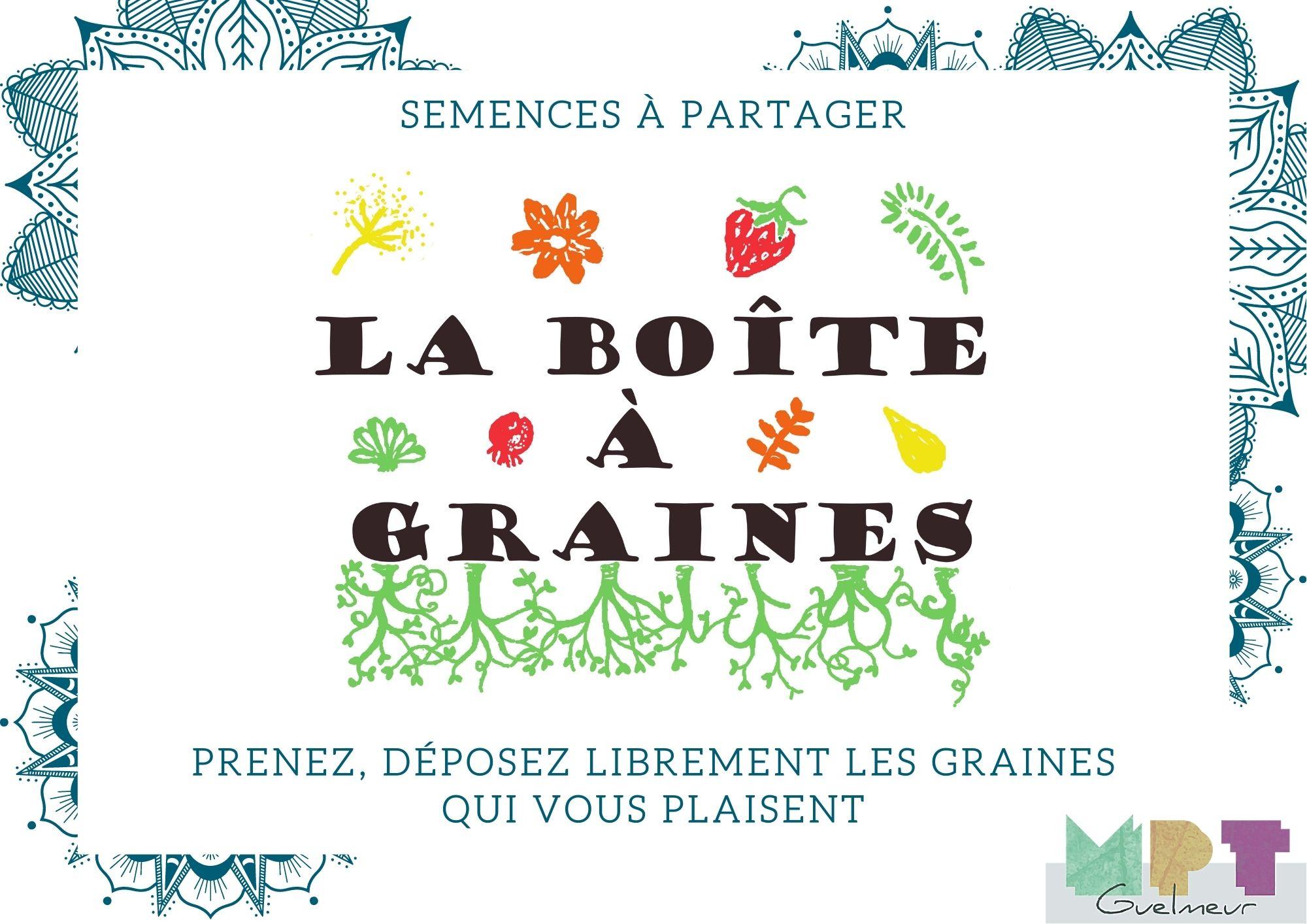 boite_à_graines