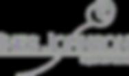 logo%20johnson_edited.png