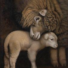 ANIMALS | WILDLIFE