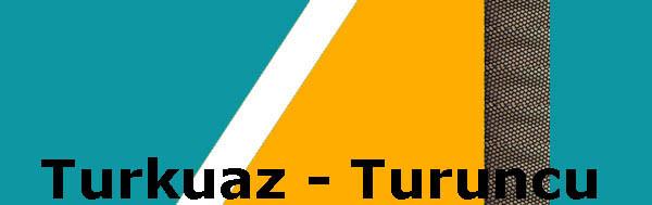 turkuaz_turuncu.jpg