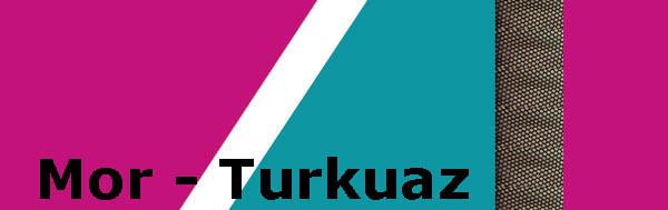 mor_turkuaz.jpg