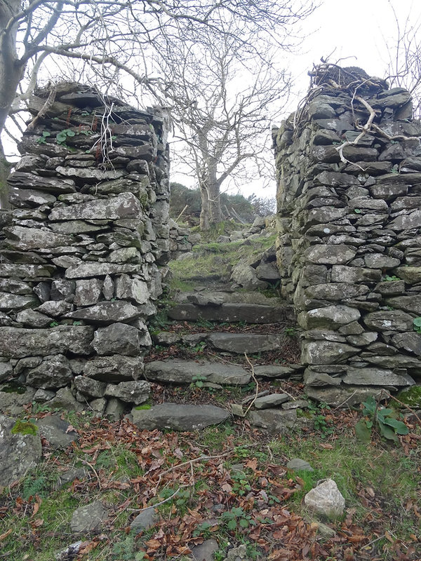 Buttressed Wall Downshill.jpg