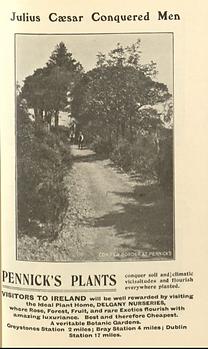 1912 Pennick's Plants .png