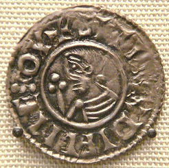 sitric coin.jpg