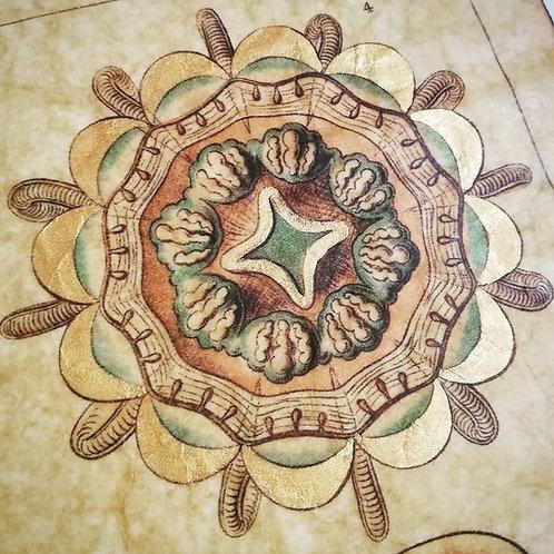 Ernst Haeckel's Narcomedusae