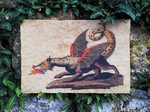 Dragon by Friedrich Justin Bertuch, 1806
