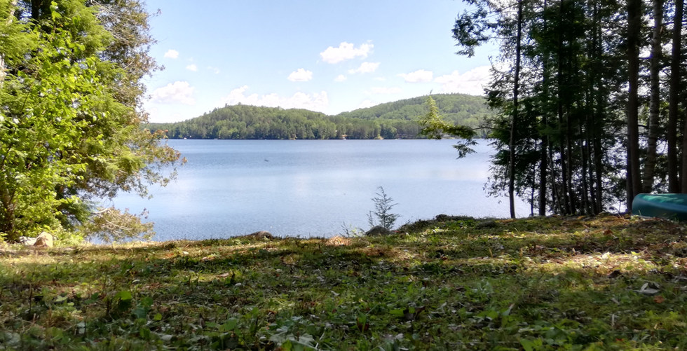 Trout Lake shore at Algonquin Heights
