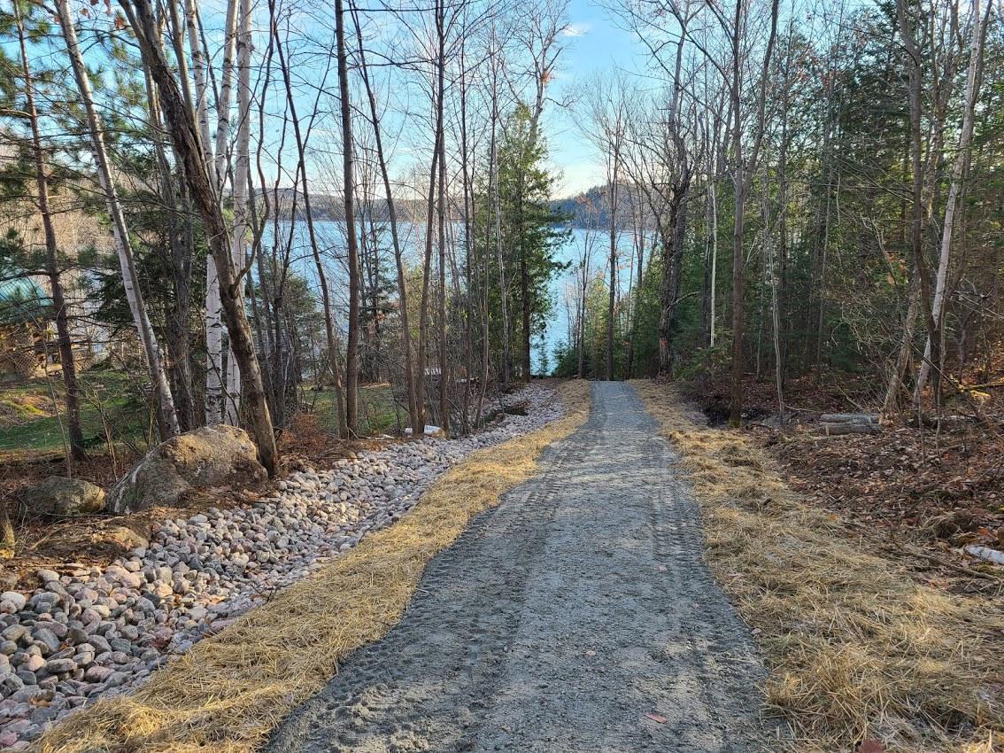 Path to Lake.jpg