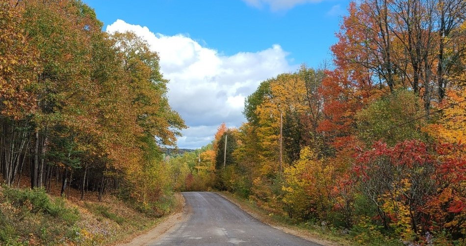Mitchell Road in the fall.jpg