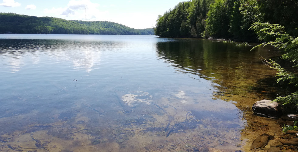 Lakefront at Lot 20 Algonquin Heights