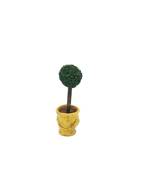 L'Arbuste Anduze jaune