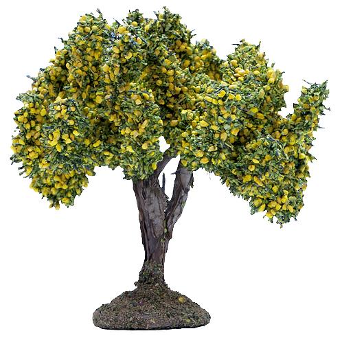 L'Arbre Mimosas
