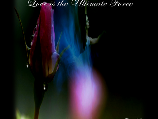 Love is the Ultimate Force
