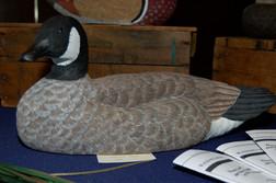 Cackling Goose.JPG