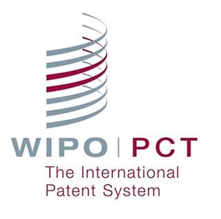 El Tratado de Cooperación en materia de Patentes. Mitos sobre la mal llamada patente internacional