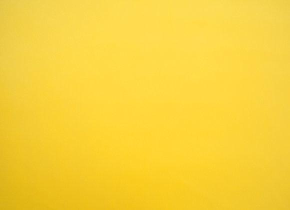 Cambio Lemon