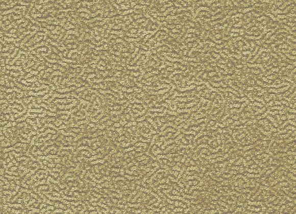 FON2340 Wheat