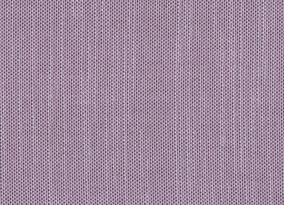 COL2838 Hyacinth
