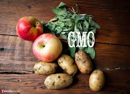 Genetically modified agriculture and foods