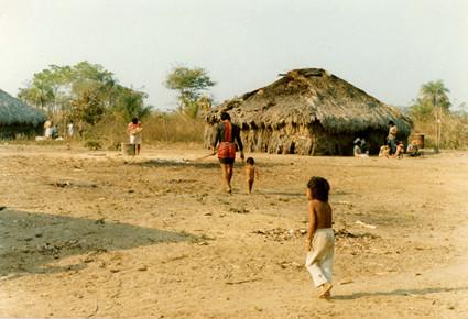 """Governo de MT quer aproveitar a Covid pra """"passar a boiada"""" em terras indígenas"""