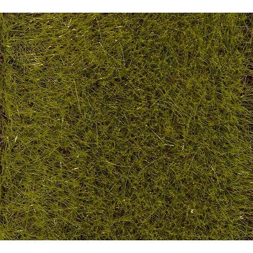 Faller 170772 - Flocage premium prairie