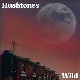 Hushtones – 'Wild' / New Single