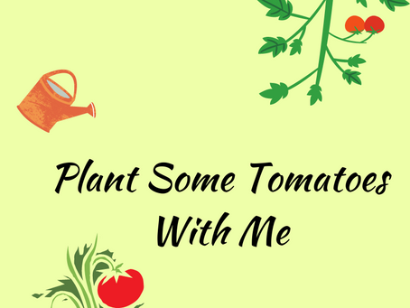 National Tomato Day!