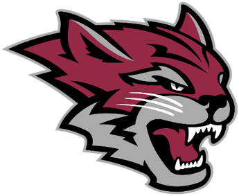 2017 D2 XC Top 5 Teams: #4 Chico State Wildcats