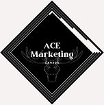Toronto Marketing Agency