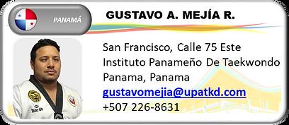 GM PANAMA MEJIA.png