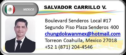 GM MEXICO CARILLO.png
