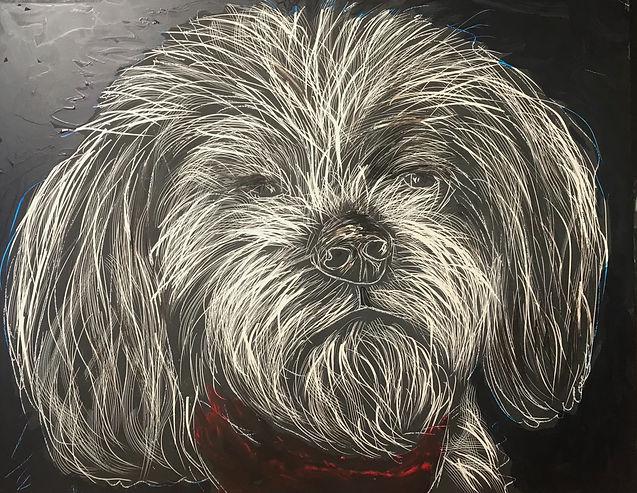 ART DOG, SHORTY