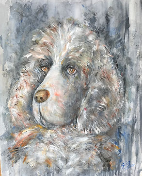 AR DOG
