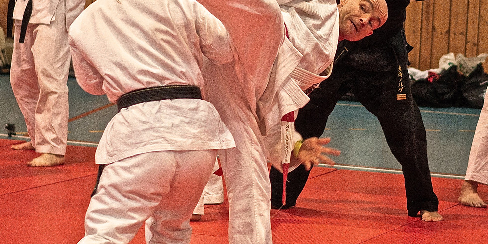 Ju Jitsu - gratis intro nr. 2 (16-55 år)