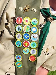 Las insignias de mérito