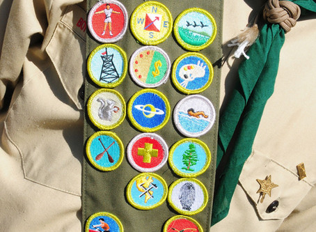 Scouts looking for pound a job opportunities for summer camp