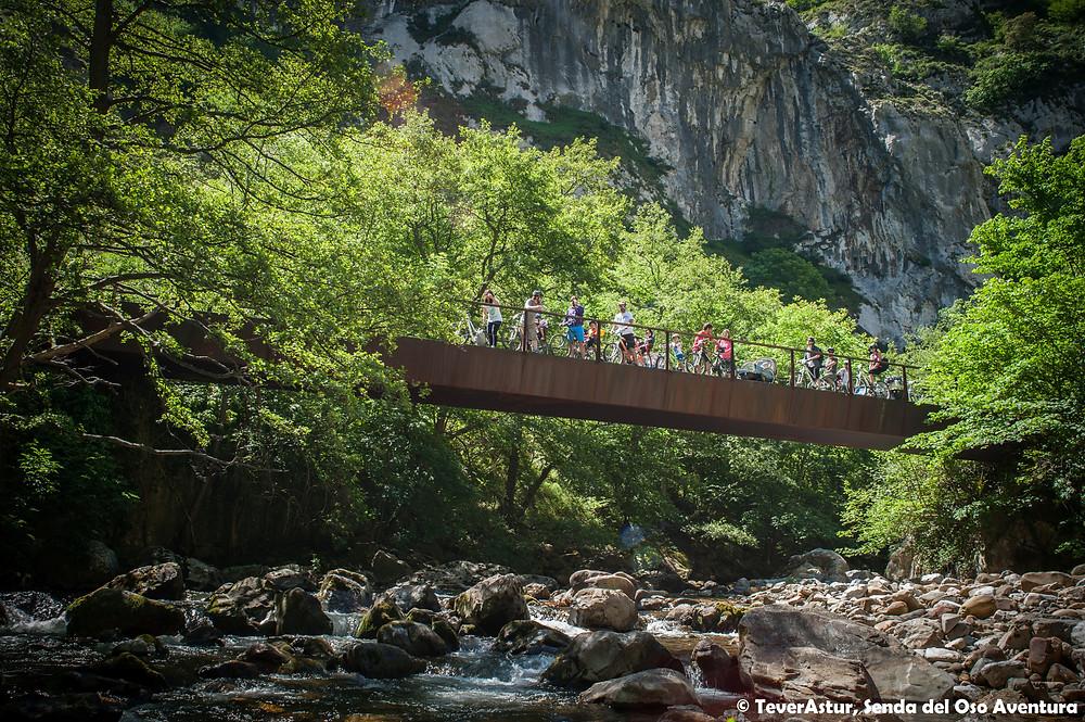 Turistas en bici en puente de la Senda del Oso