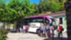 autobús senda del oso