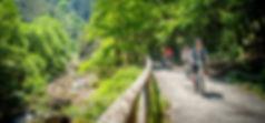 Descenso en bici de la Senda del Oso, Asturias