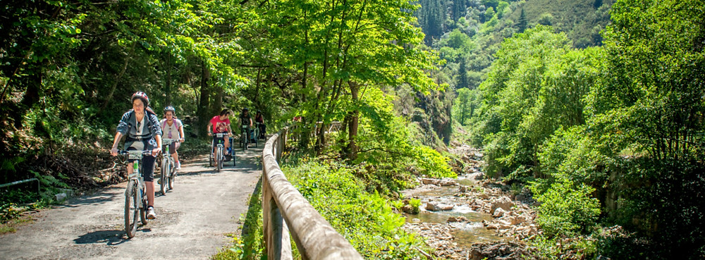 Turistas haciendo el Descenso en bici Senda del Oso TeverAstur