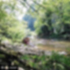 Couple by the river on the Bear Trail
