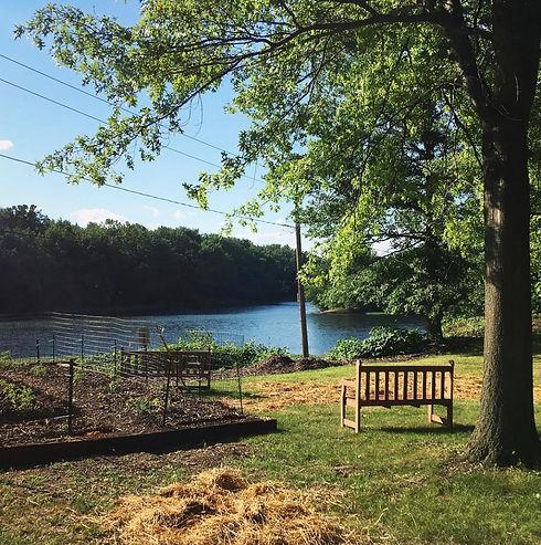 downtown riverview park photo.JPG