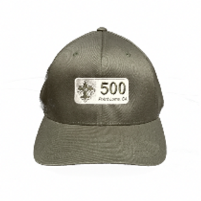 Troop 500 Adult Hat