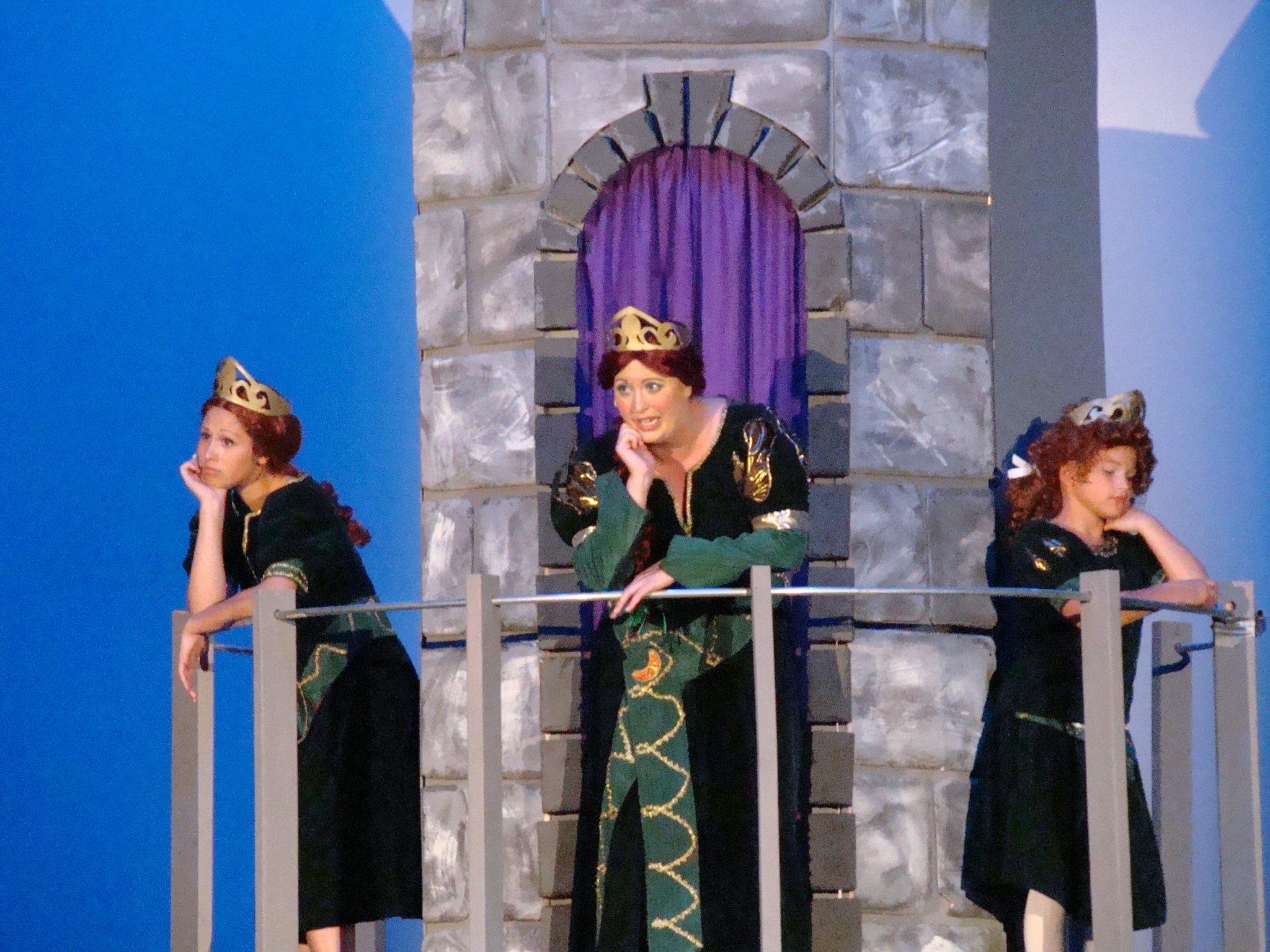 Shrek The Musical Costumes United States Dare To Dream Theatre