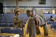 Elephant and Girraffe