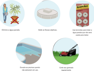 Como você pode ajudar a eliminar  os mosquitos ao redor da sua casa?