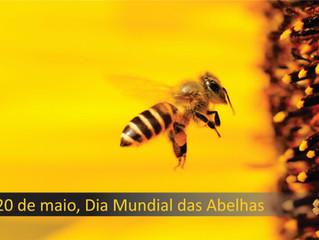 Dia Mundial das Abelhas
