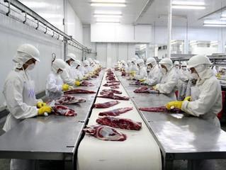 Manejo higiênico da carne bovina