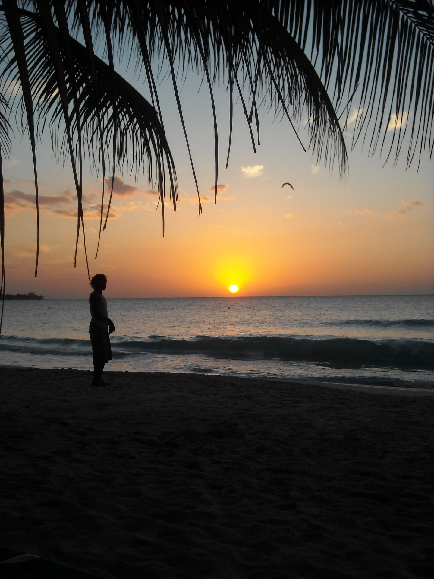 jamaica sunset beach